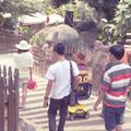 Creids Adventure in Batu Secret Zoo